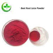 beet root juice powder