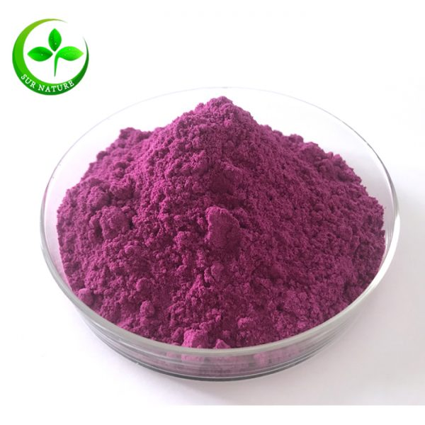 freeze dried dragon fruit powder